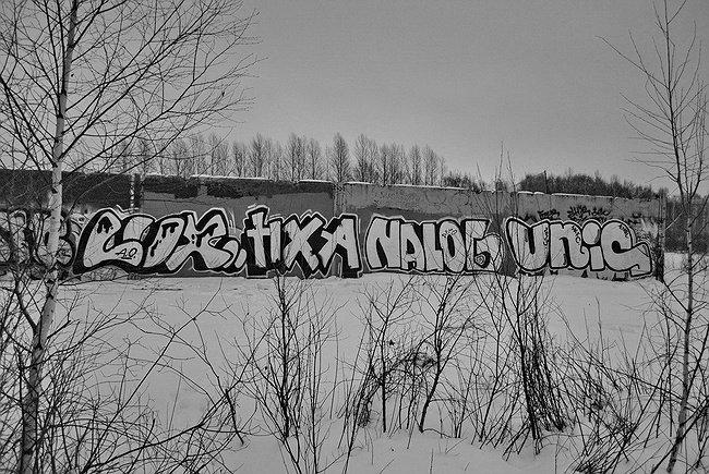 AFRO (NALOG, UNIC), Кострома