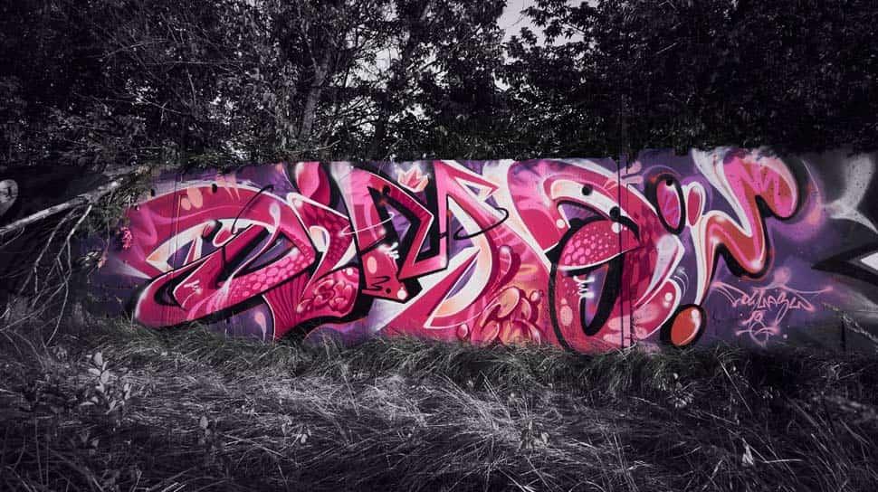 DIMASW