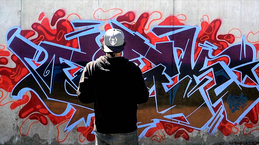 ANY GIVEN SUNDAY : FISEK